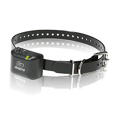Dogtra YS300, No Bark Collar