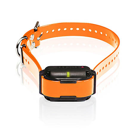 Dogtra 2300NCP ADD. RX, E-Collar