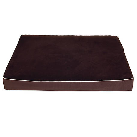 Aspen Pet 36 in. x 48 in. x 5.75 in. Double Orthopedic Dog Bed