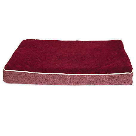 Aspen Pet 18 in. x 28 in. x 3.5 in. Deluxe Orthopedic Dog Bed