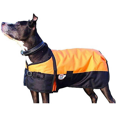Derby Originals 600D Dog Coat Waterproof
