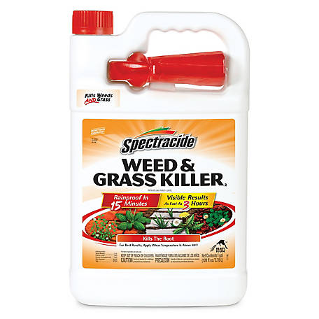 Spectracide Weed & Grass Killer, Ready-to-Use, 1 gal., HG-96017
