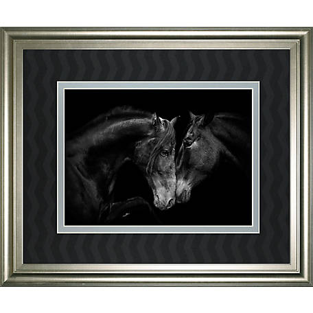 Classy Art 34 in. x 40 in. The Stallion And Mare LL, DM5656