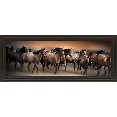 Classy Art 18 in. x 42 in. Oncoming Storm Print, 1344