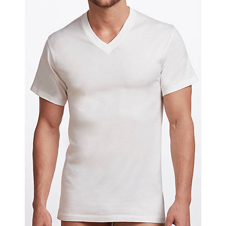 Stanfield's Men's 2 Pk Cotton V-Neck T-Shirt 2570