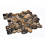 Rain Forest Mixed Midpolish Pebble Tile, 12 in. x 12 in.