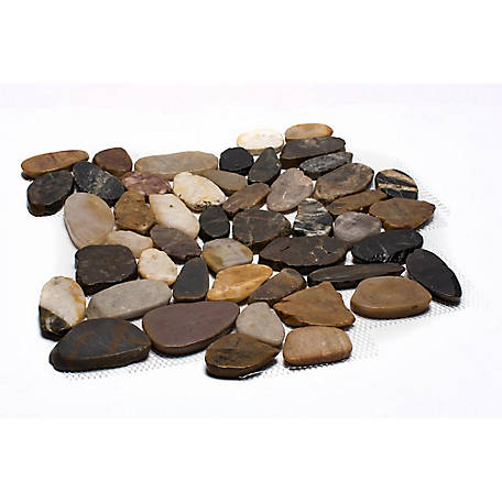 Rain Forest Mixed Sliced Polished Pebble Tile, 12 in. x 12 in.