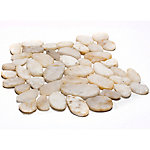 Rain Forest White Sliced Polished Pebble Tile, 12 in. x 12 in.