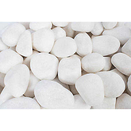 Rain Forest Small Snow White Pebbles 20 lb.