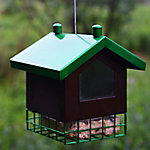 Royal Wing Birdhouse Suet Feeder, 21705 RW