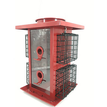 Royal Wing Large Combo Feeder with Suet, 9510