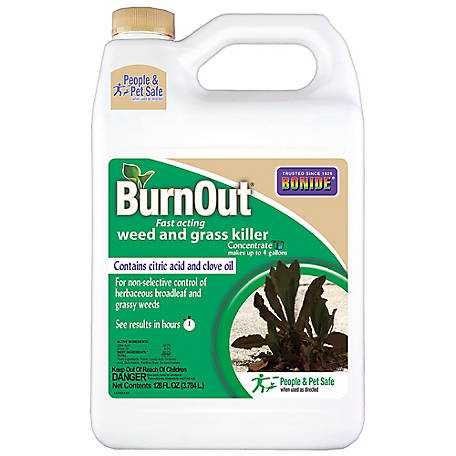 Bonide Burnout Fast-Acting Weed & Grass Killer Concentrate, 1 gal., 7465