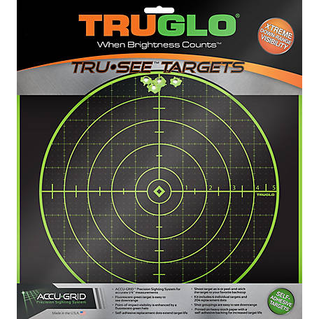 TruGlo Target 100 yd. 12 x 12, 25 Pack, TG10A25