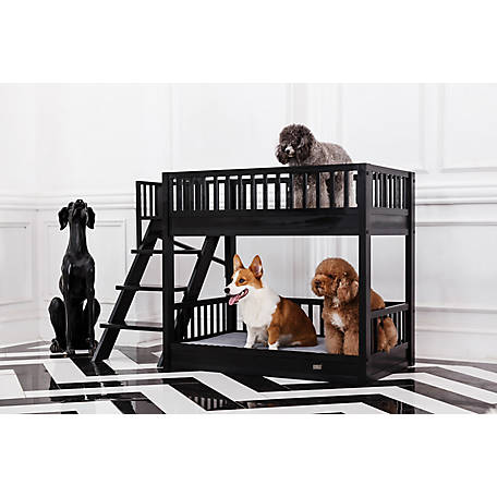 New Age Pet, Aspen Bunk Beds made with ECOFLEX
