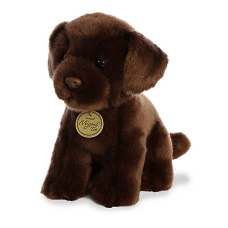Aurora 11 Chocolate Lab Pup, 26379