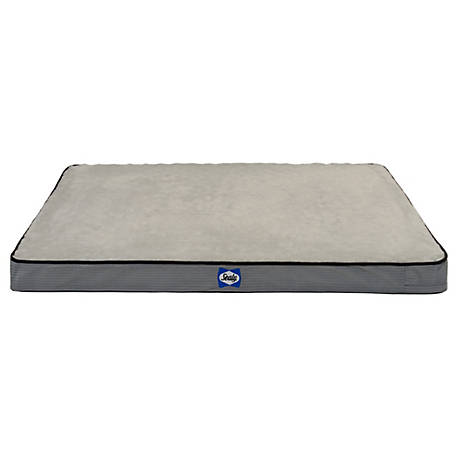 Sealy Orth Dog Bed Medium 27x36