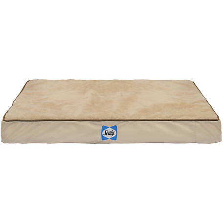 Sealy Orth Dog Bed XLarge 38x48