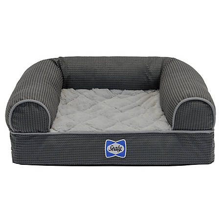 Sealy Pre Ortho Couchbolster Bed Extra Small