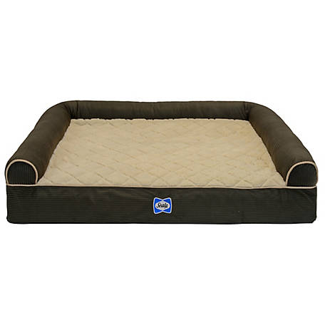Sealy Pre Ortho Couch Bolster Bed Small