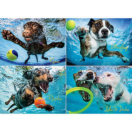 Willow Creek Press Underwater Dogs 2 1000-Piece Puzzle, 709786030729