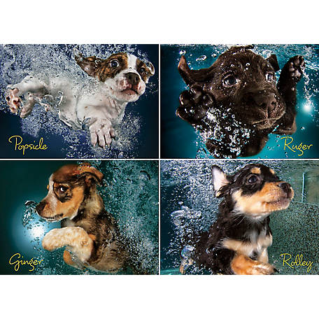 Willow Creek Press Underwater Puppies 1000-Piece Puzzle, 709786035014
