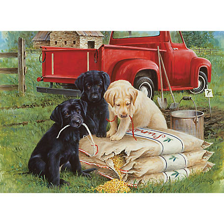 Willow Creek Press Just Dogs 1,000-Piece Puzzle 709786038626