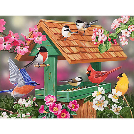 Willow Creek Press Feathers & Flowers 1,000-Piece Puzzle 709786048434