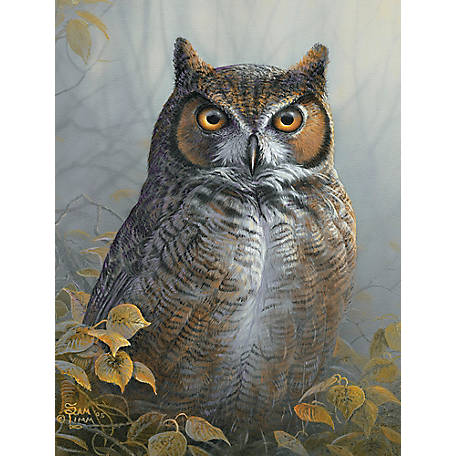 Willow Creek Press Watchful Eye 1,000-Piece Puzzle 709786048441