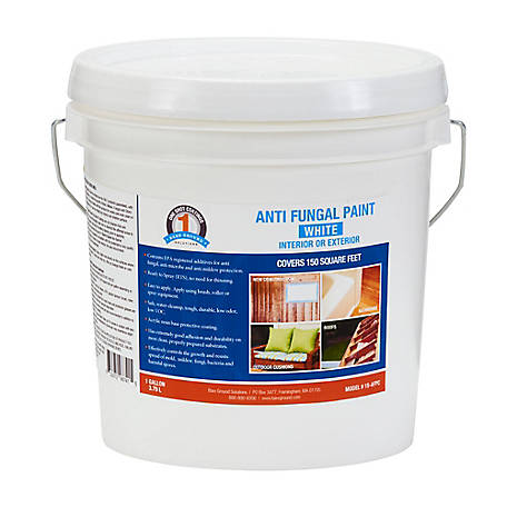 1 Shot Anti-Fungal Paint White, 1S-AFPC