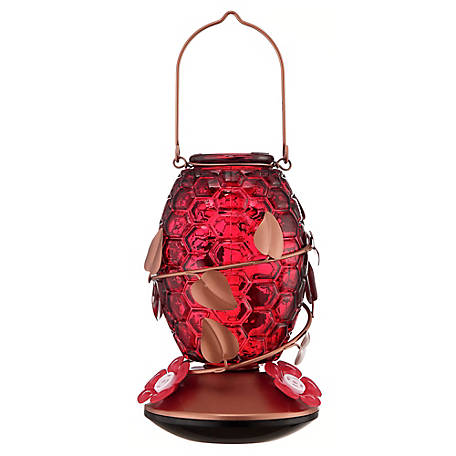 Royal Wing Red Glass Hummingbird Feeder with Decorative Vine, BC-20190314009
