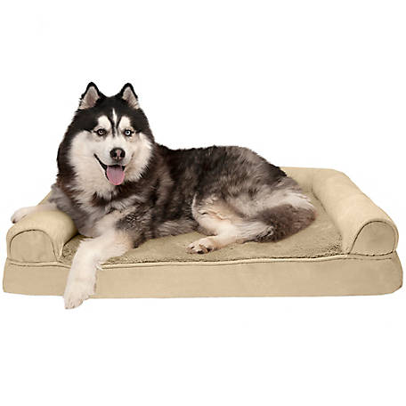 FurHaven Pet Plush & Suede Memory Foam Sofa Dog Bed