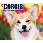 Willow Creek Press Corgis 2020 Box Calendar, 8829