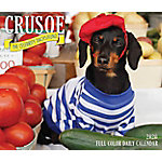 Willow Creek Press Crusoe The Celebrity Dachshund 2020 Box, 8836