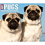 Willow Creek Press Pugs 2020 Box Calendar, 8959