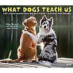 Willow Creek Press What Dogs Teach Us 2020 Box Calendar, 9024