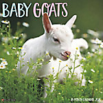 Willow Creek Press Baby Goats, 9079