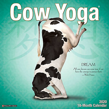 Willow Creek Press Cow Yoga 2020 Wall Calendar, 6061