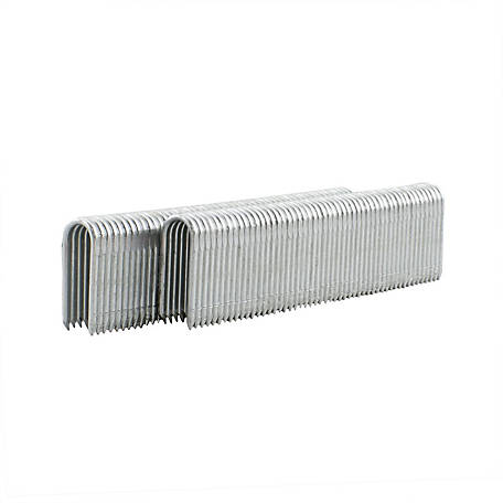 Freeman 16 Gauge 7/8 Fencing Staples, FS16G78