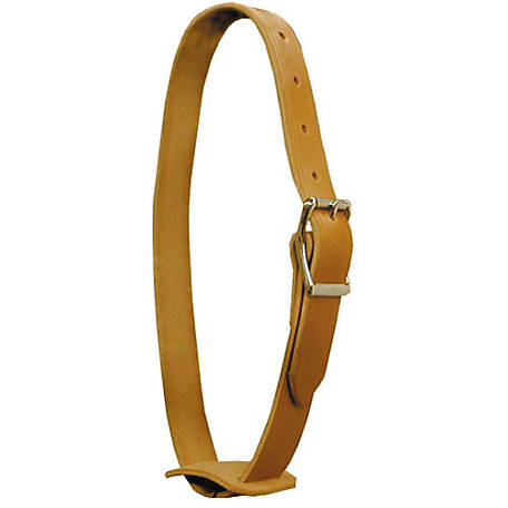 Outfitters Supply Horse Bell Strap, WPH135