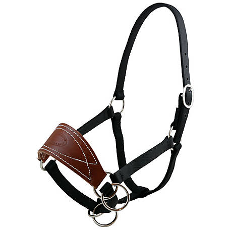 Outfitters Supply Mule Halter WTK150