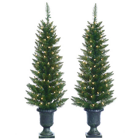 Sterling Tree Company Potted Cedar Pine Christmas Tree, Set of 2, 5545--40C