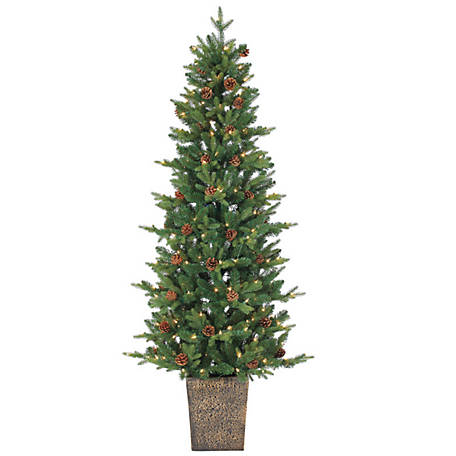 Sterling Tree Company 6 ft. Potted Natural Cut Georgia Pine with 200 Clear Lights, 5581--60C