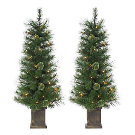 Potted Christmas Tree.Sterling Tree Company Potted Hard Mixed Needle Cashmere Christmas Tree With 70 Clear Lights Set Of 25224 40c At Tractor Supply Co