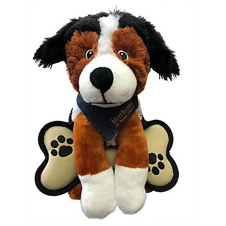 MuttNation Fueled by Miranda Lambert Men's Adoption Dog Bernese, MSDT150