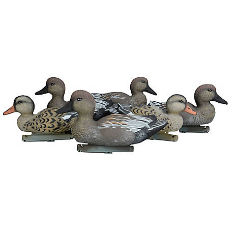 Duck Commander Gadwall Decoys - Foam Filled, DC17GFF
