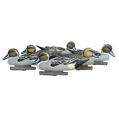 Duck Commander Pintail Decoys - Foam Filled, DC17PFF