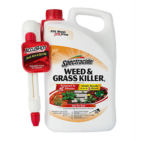 Spectracide Weed & Grass Killer Accushot Sprayer, 1.33 gal., HG-96370