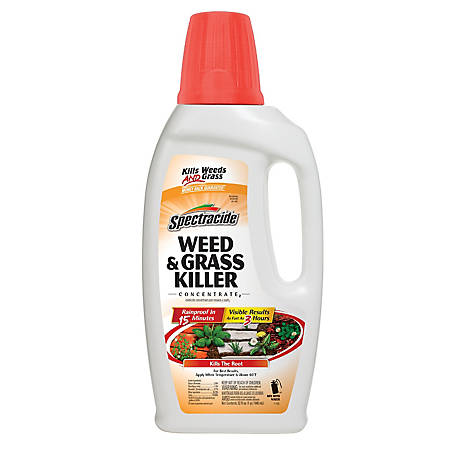 Spectracide Weed & Grass Killer Concentrate, 32 fl. oz., HG-96390