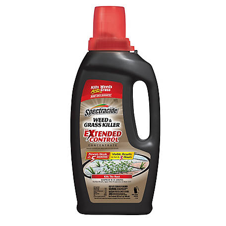 Spectracide Weed & Grass Killer with Extended Control Concentrate, 32 fl. oz., HG-96391