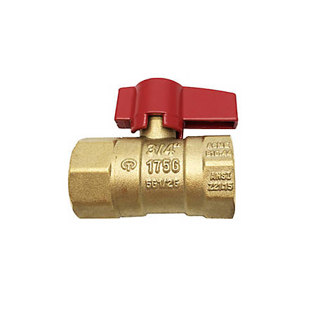 THEWORKS 1 in. FIP x FIP Brass Threaded Gas Ball Valve, LFBV171